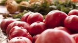 Земеделци зоват да не превръщаме борбата с коронавируса в игра на глада