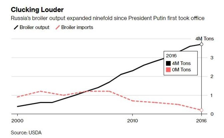 Производството на бройлери в Русия е нараснало 9 пъти, откак Путин е на власт