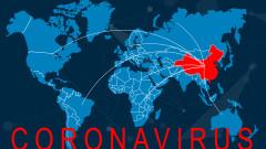 Китай забрани търговията и консумацията на диви животни заради коронавируса