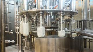 """""""Димитър Маджаров"""" инвестира над 1 милион лева в производство на прясно мляко"""
