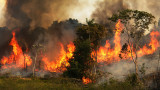 И армията се включи в потушаване на пожарите в Амазония