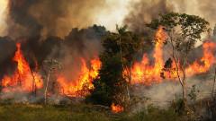 Амазонка гори, целият свят изгаря