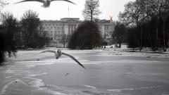 Лондонската полиция уби човек, друг е задържан до Бъкингамския дворец