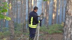 Гора край Хасково пламна заради тлеещо сметище