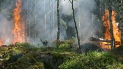 Огън на открито и обгаряне на стърнища – причина за 75% от пожарите