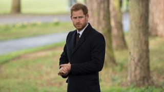 Принц Хари се хвана на работа
