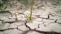 Връзката между самоубийствата и глобалното затопляне