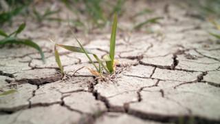 Самоубийствата и глобалното затопляне