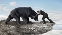 Deutsche Bank: S&P 500 може да падне с 10%
