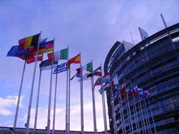 Филиз Хюсменова: Няма да има предпазна клауза за България