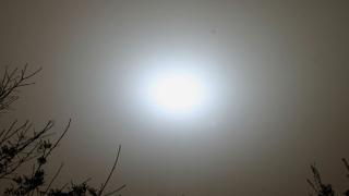 Произвеждат ток от слънчева енергия в Севлиевско