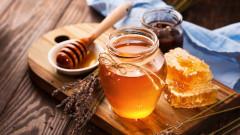 ЕП защитава пчелите и се бори срещу фалшивия мед