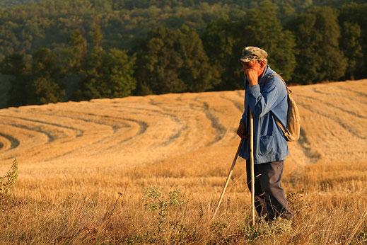 Очакват два пъти по-малко пшеница, искат по-скъп хляб