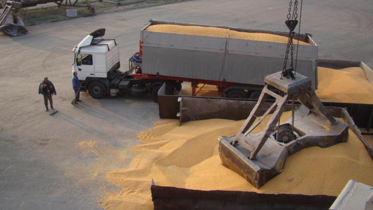 Износът на пшеница от Румъния се срина само за месец