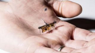 Първото безжично летящо роботизирано насекомо е факт