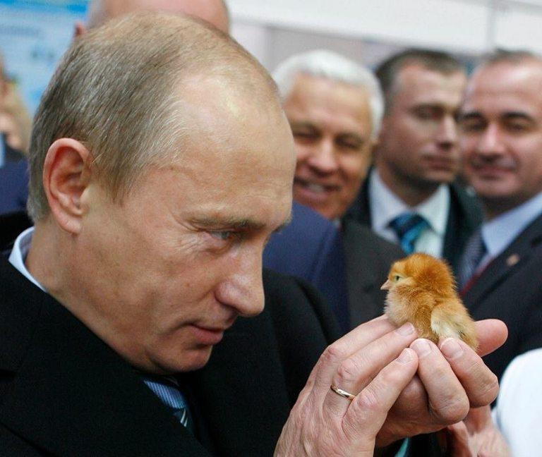 За Владимир Путин руските пилета са стратегически въпрос