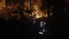 Потушен е пожарът, горял в с. Каменар