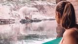 Pairi Daiza Resort - белгийският курорт с гледка като никоя друга