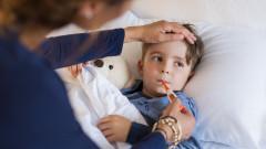 София, Пловдив и Добрич обявяват грипна епидемия