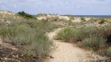 Масова проверка за къмпингуващите в местността Корал