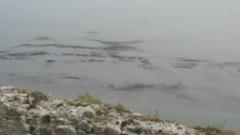 Очакват се резултати за нефтено петно в района на пристанище Видин
