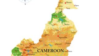Сепаратисти от англоговорящата част на Камерун убиха жена с мачете