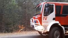 Горски пожар избухна в община Кирково