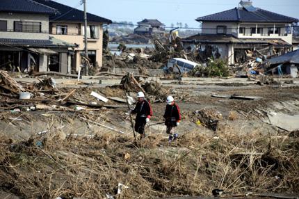 6,5 по Рихтер стресна Япония