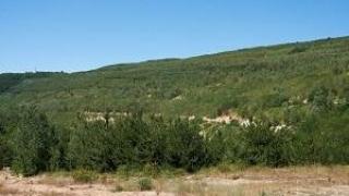Спряха процедурата по ОВОС за находището в Трън