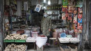 COVID-19 идва от прилепи, пазарът в Ухан имал роля за разпространението