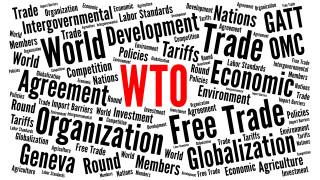 СТО удължи забрана за облагане на електронната търговия до юни 2020 г.