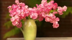 5 идеи за свежи цветя в дома