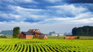 Какво дава селското стопанство за икономиката на САЩ?