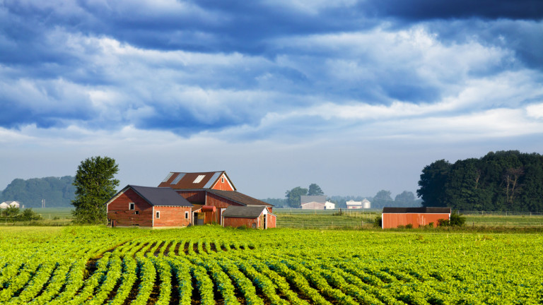 Цената на земеделската земя във Великобритания е спаднала през последните