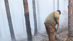 Пожарникари и доброволци гасиха 5 часа пожар край Стрелча