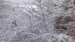 Обилен снеговалеж блокира проходи