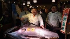 Рекордна цена за риба тон в Япония