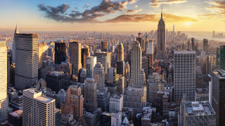 """""""Живият"""" небостъргач, построен от дървета"""
