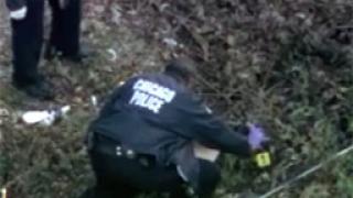 Племенникът на Хъдсън бил застрелян в намерения джип