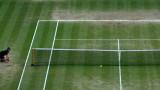 Организаторите на тенис турнира в Уимбълдън ще раздадат 10 милиона паунда