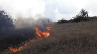 Пожарът в Маджарово обхвана 8000 дка, 2663 са гори