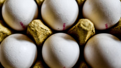 В България няма опасни яйца