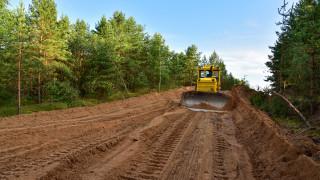 Шумовото замърсяване представлява дългосрочен риск за дърветата
