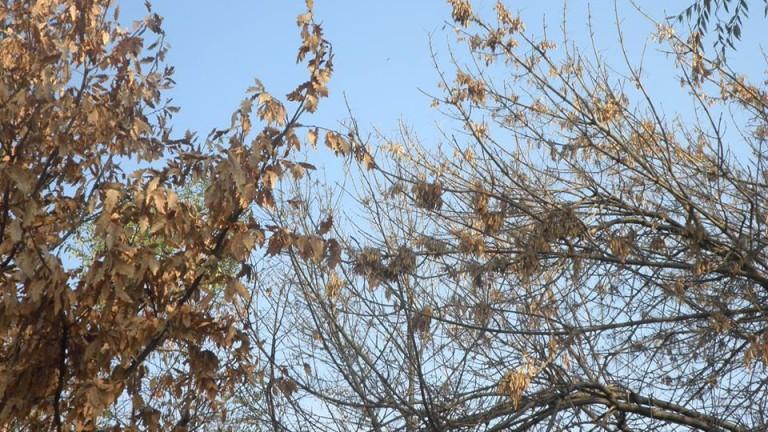 Ветровит и слънчев вторник