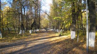 "Стартира подписка в защита на парк ""Странджа"" в Бургас"