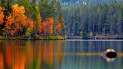 Това ли е най-красивата есен