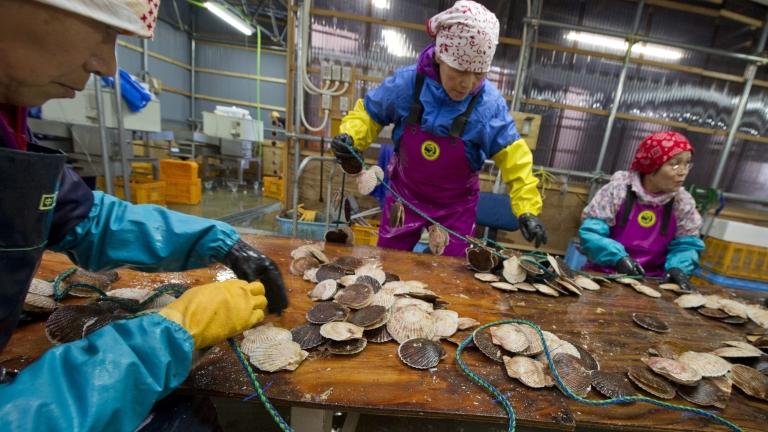 Скоро японците може да работят до 80-годишна възраст