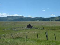 Пуснаха българската земя за разпродажба на чужденци