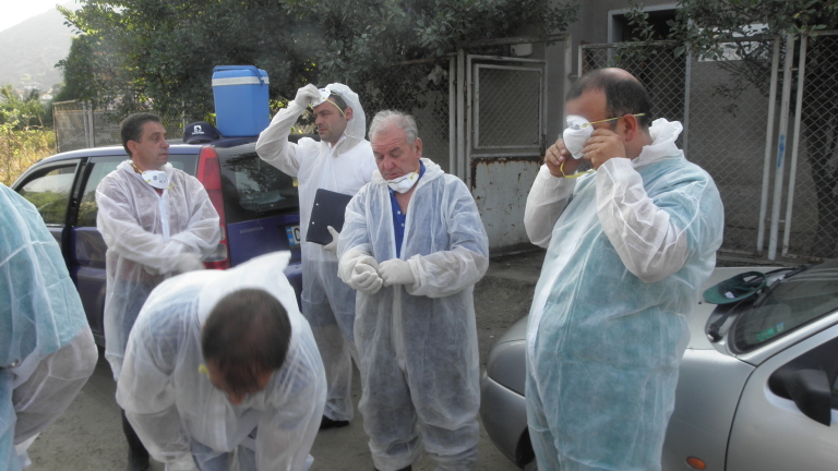 Изследват за бруцелоза над 800 животни в град Рила и близките села