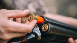 Ловци предупреждават за погрешни мерки срещу чумата по свинете